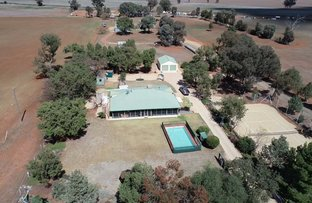 Picture of 501 HENRY PARKES WAY, Parkes NSW 2870