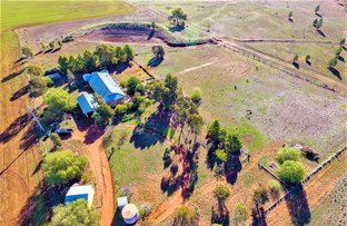 Picture of 621 Barellan  Road, Narrandera NSW 2700