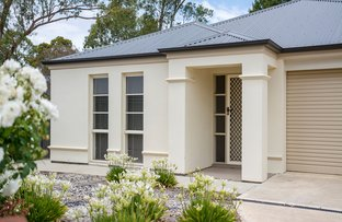 Picture of 14 Graham Close, Mount Barker SA 5251
