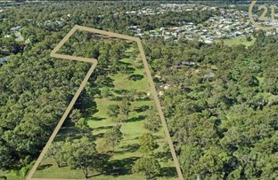 Picture of 164 Barrenjoey Drive, Ormeau Hills QLD 4208