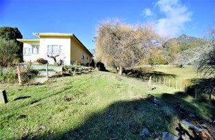 13363 Highland lakes Rd, Golden Valley TAS 7304