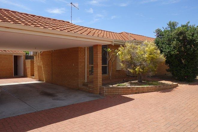 Picture of 15/69 Hutton Street, STIRLING WA 6021