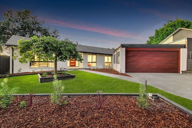 Picture of 66 Laura Road, KNOXFIELD VIC 3180