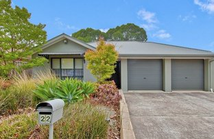 Picture of 22 Hartley Grove, Windsor Gardens SA 5087