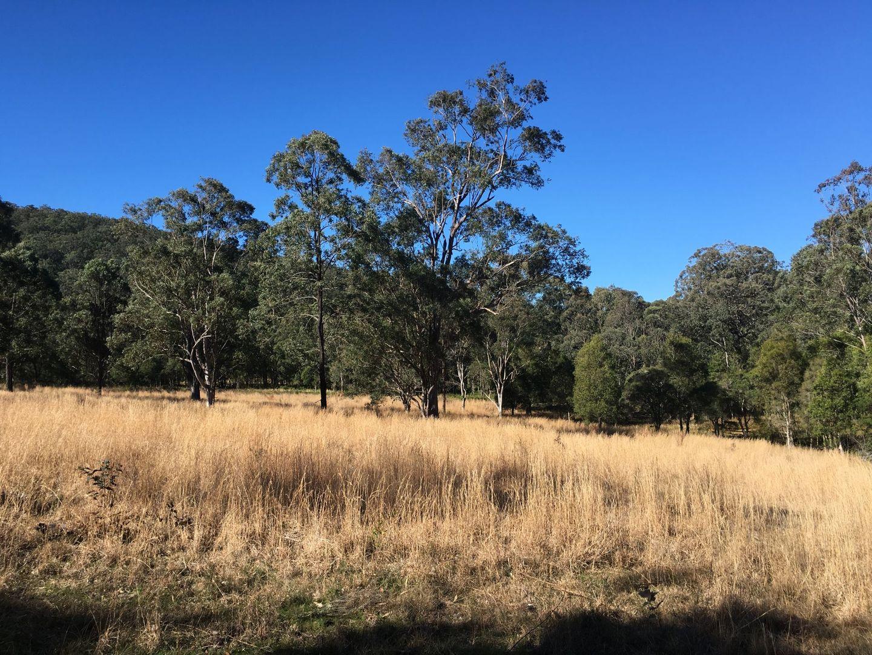 268 Six Mile Rd, Eagleton NSW 2324, Image 1