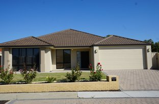 Picture of 36 Grebe Street, Stirling WA 6021