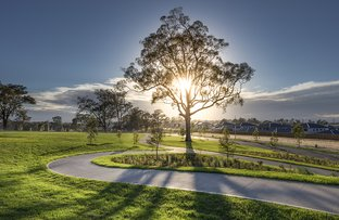 Picture of Lot 1421 Mornington Grove , GLEDSWOOD HILLS NSW 2557