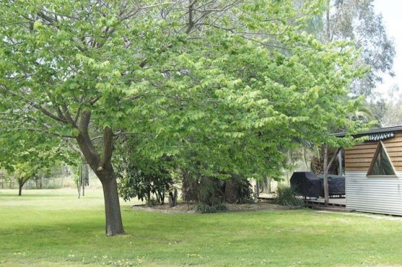 150 Sexton Road, Torrumbarry VIC 3562, Image 2