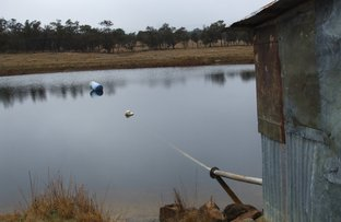 Eukey Road, Stanthorpe QLD 4380