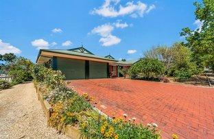 7 Bruce Rundle Drive, Williamstown SA 5351