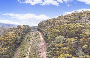 Picture of 964 Kopirrie Lane, Lochiel NSW 2549