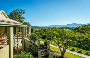 524 North Bank Road, Bellingen NSW 2454