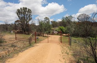 99 Whiskers Creek Road, Carwoola NSW 2620