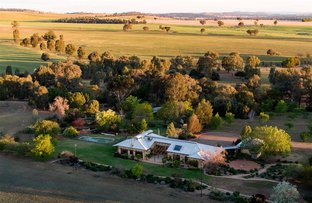 Picture of 50 Shepherds Siding Road, Wagga Wagga NSW 2650