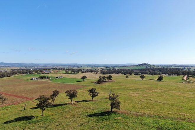 Picture of 263 Springfield Lane, MUDGEE NSW 2850