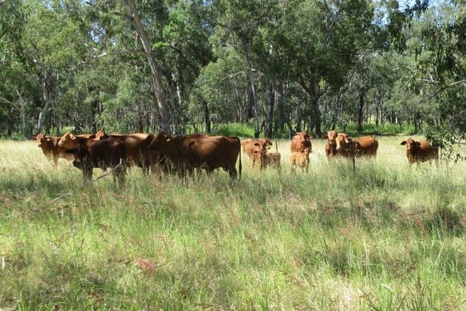 Picture of 2519 ACRES GRAZING PROPERTY, DULACCA QLD 4425