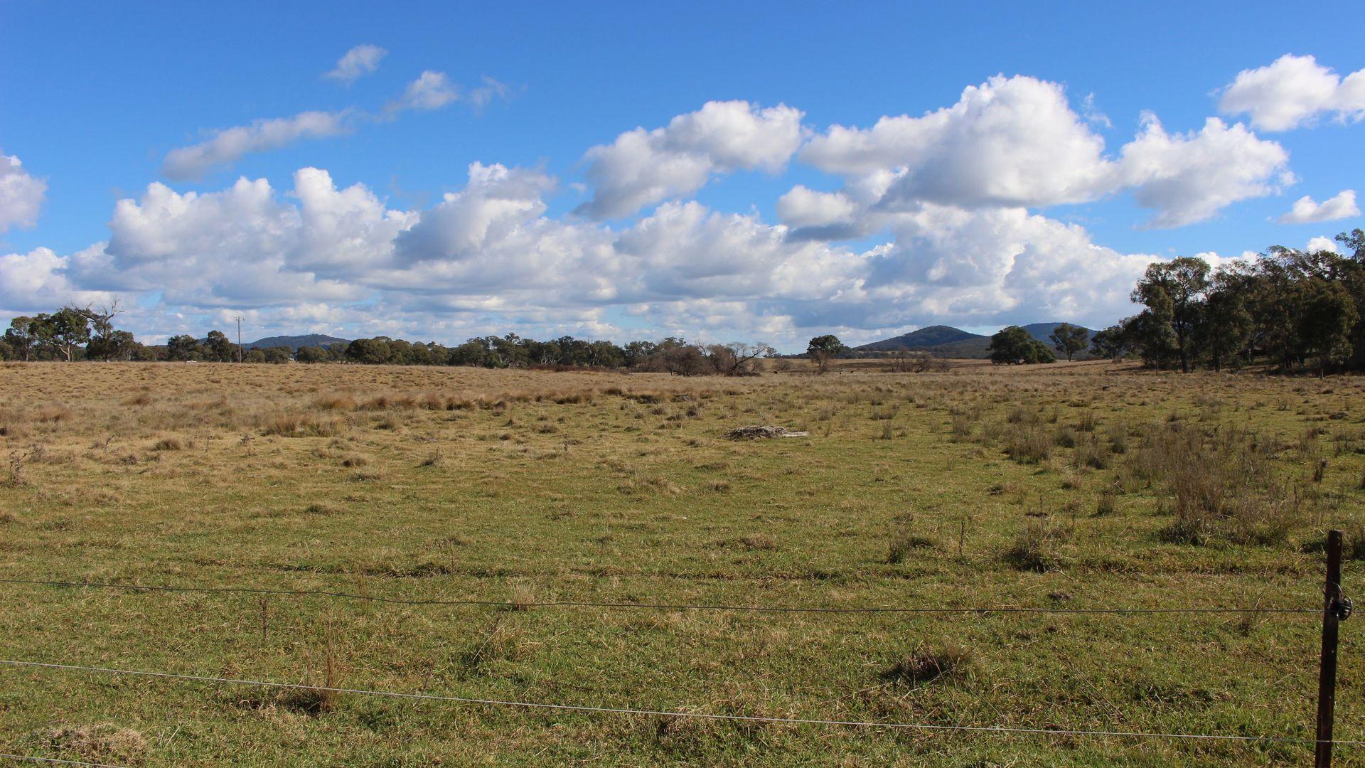 452 Bruxner Way, Tenterfield NSW 2372, Image 1
