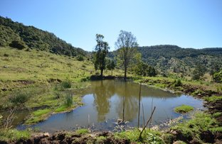 Picture of Canungra QLD 4275