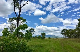 Picture of Proserpine QLD 4800