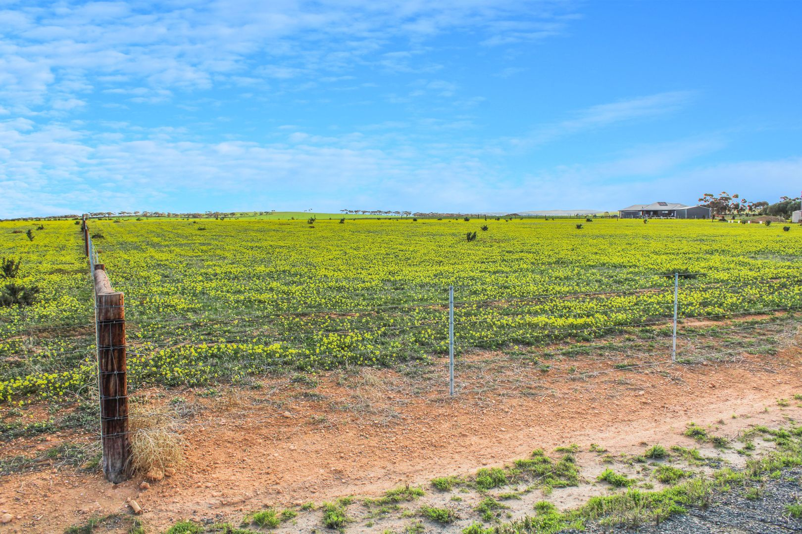 38 Barley Drive, Mannum SA 5238, Image 1