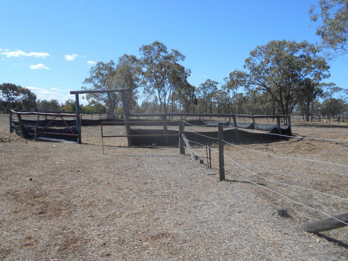 455 Alton Downs Nine Mile Road, Alton Downs QLD 4702, Image 2
