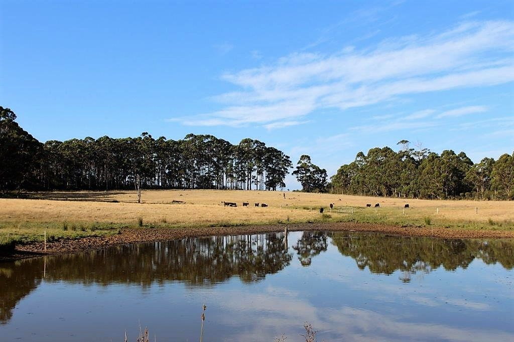 706 Valley of the Giants Road, Denmark WA 6333, Image 2