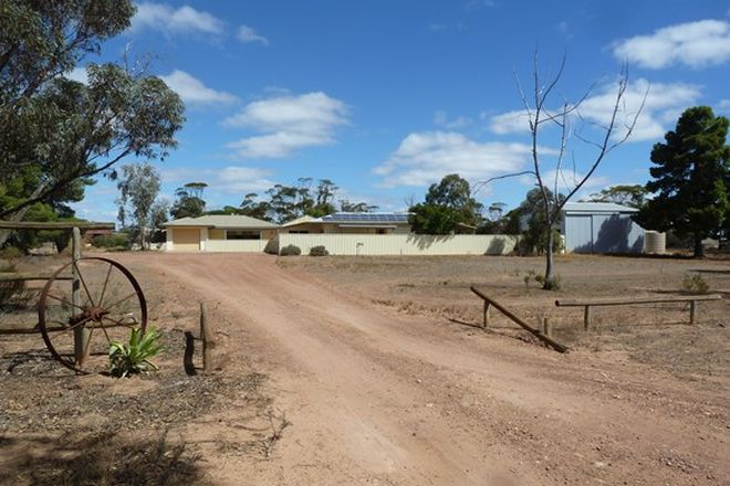 Picture of 26223 Eyre Highway, WUDINNA SA 5652