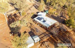Picture of 2520 Manilla Road, Attunga NSW 2345