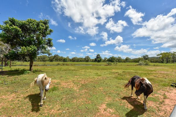 23 Finlay Road, Adelaide River NT 0846, Image 1