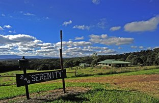 Picture of Barrine QLD 4872