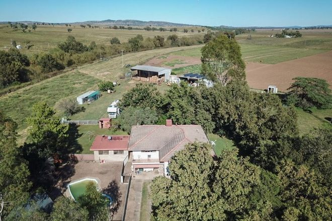 Picture of WILLOBY 41 McDonald Street, MANILLA NSW 2346