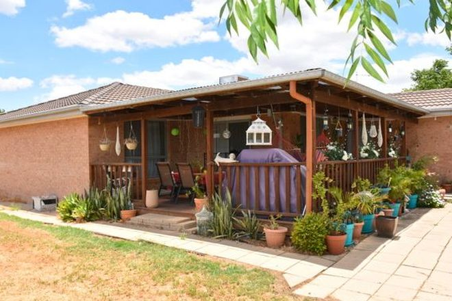 Picture of 1 Sheoak Place, MOREE NSW 2400