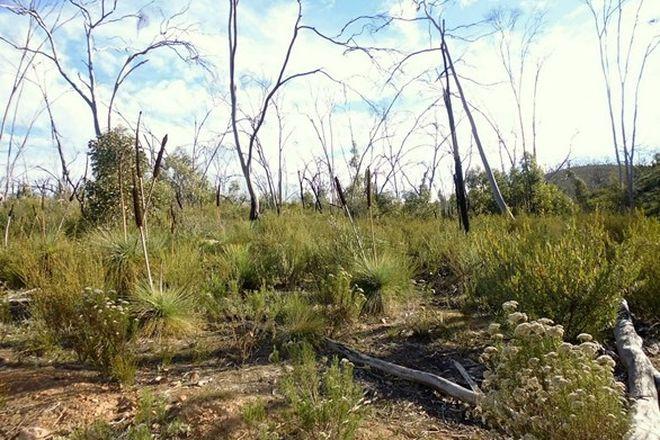 Picture of Lot 100 Kleinigs Road, STONE HUT SA 5480