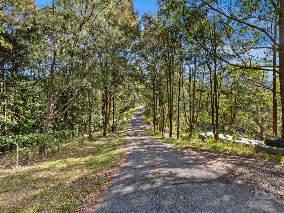 895 Limpinwood Road, Limpinwood NSW 2484, Image 0