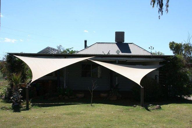 Picture of 'Upper Gum Tree' Doring Lane, MANILLA NSW 2346