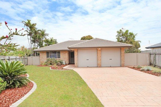 Picture of 8 Lyrebird Place, WURTULLA QLD 4575