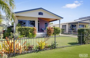 Picture of 172 Scenic Highway, Lammermoor QLD 4703