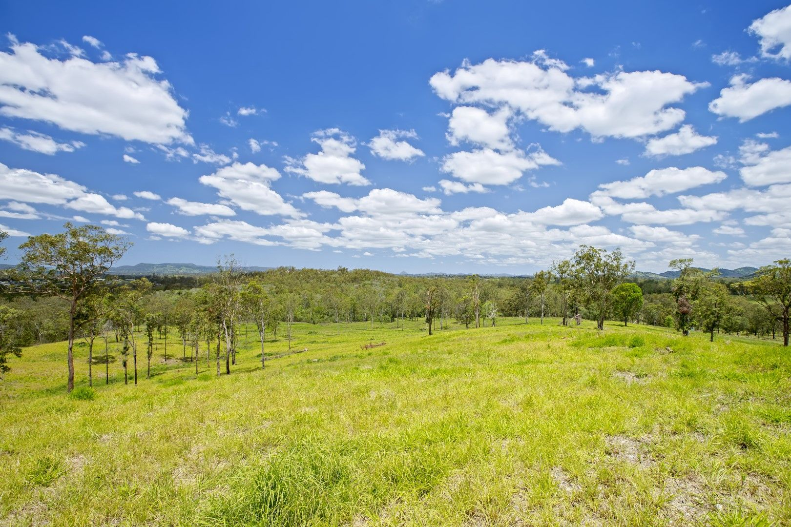 415 Groundwater Road, Jones Hill QLD 4570, Image 2