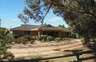 Picture of 691 Peakes Three Chain Road, Nhill VIC 3418