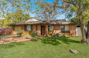 Picture of 11 Collard Court, Darling Heights QLD 4350