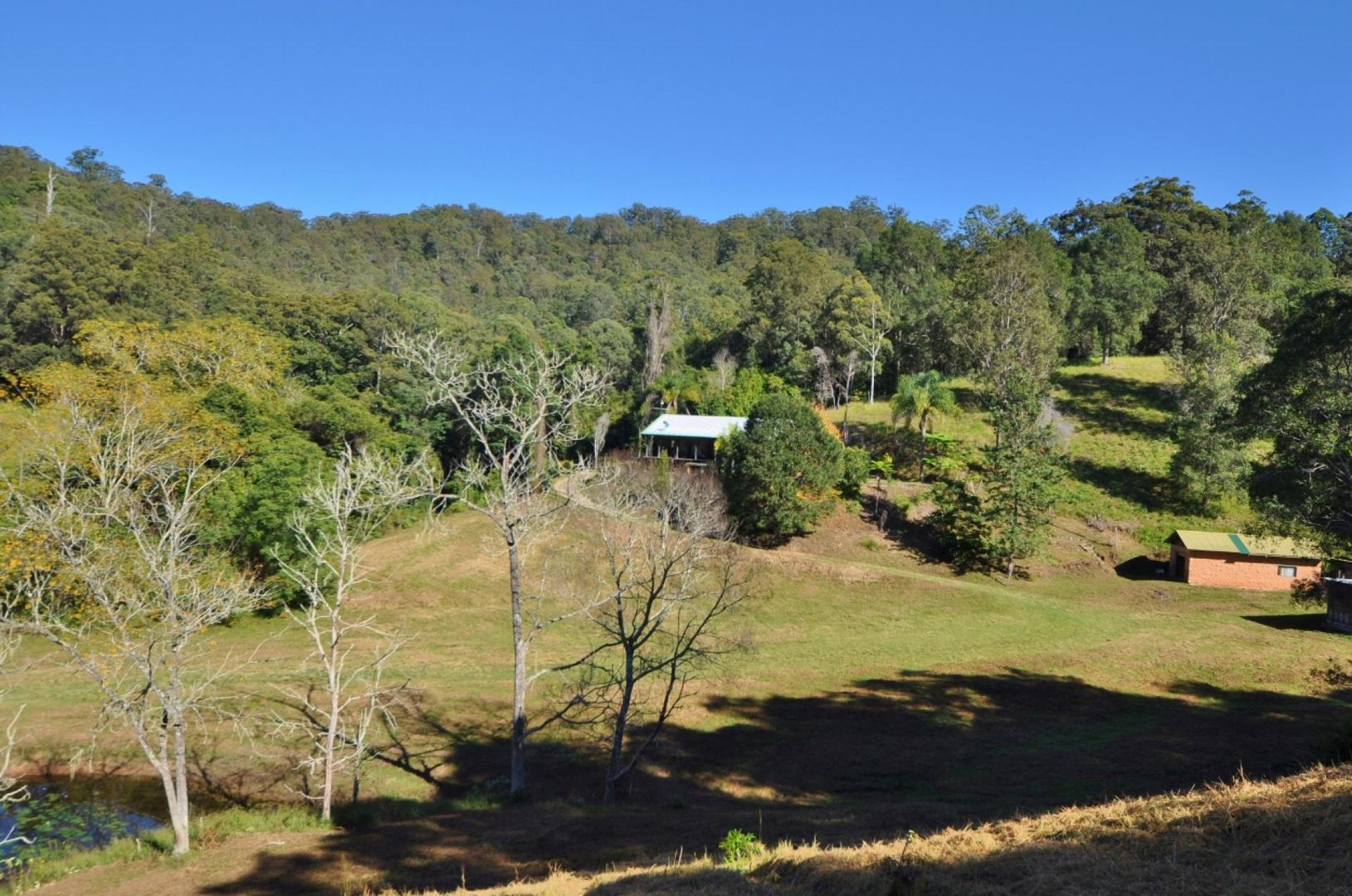 1849 North Arm  Road, Argents Hill NSW 2449, Image 0