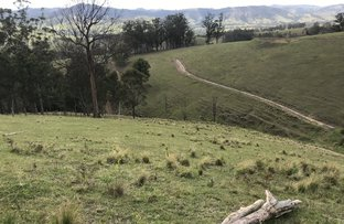 Picture of 78 Masseys Creek Road, Eccleston Via, East Gresford NSW 2311