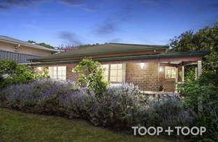 Picture of 34 Kays Road, Torrens Park SA 5062