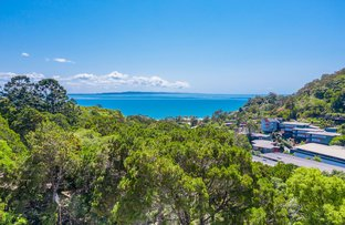 Picture of 24 Attunga Heights, Noosa Heads QLD 4567
