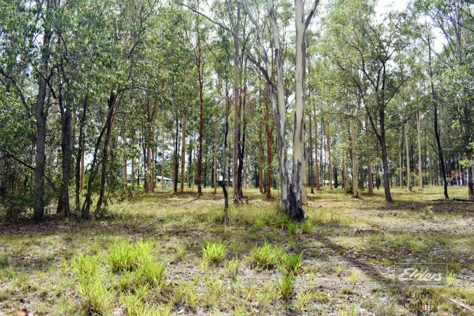 Lot 124 Andrew Road, Glenwood QLD 4570, Image 1