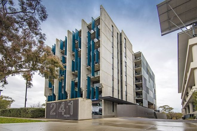 Picture of 308/241 Northbourne Avenue, LYNEHAM ACT 2602