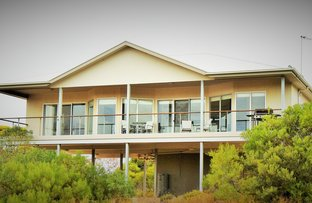 Picture of 29 Templetonia Crescent, Marion Bay SA 5575
