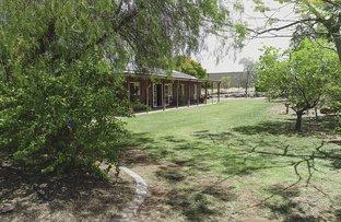 Picture of 2 Little Bend, Breakaway, Mount Isa QLD 4825