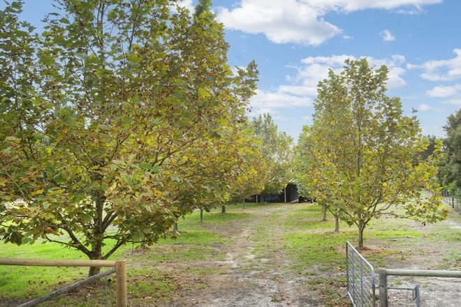 Picture of 30 Shearers Close, QUEDJINUP WA 6281