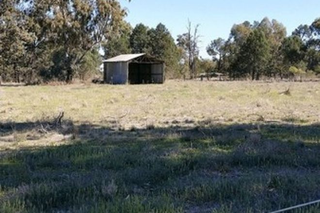 Picture of 21 Bunganbil Street, GRONG GRONG NSW 2652